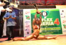 Mr Flex Nigeria 2014